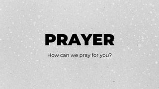Prayer Snow