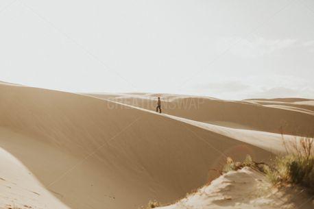 oceano dunes (93387)