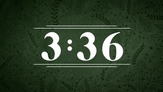 Forest Botanical : Countdown