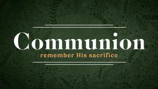 Forest Botanical : Communion
