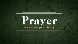 Forest Botanical : Prayer