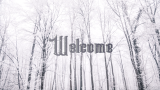 Snowy Welcome