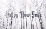 Snowy New Year (93514)