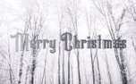 Snowy Merry Christmas (93515)