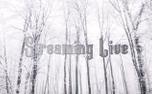 Snowy Streaming (93518)