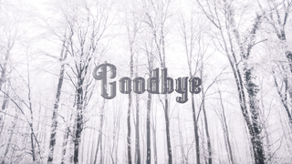 Snowy Goodbye