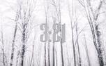 Snowy Timer (93523)
