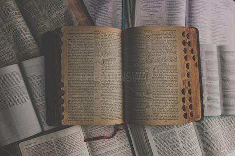 Open Bibles (93754)