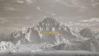 Into The Wilderness - Exodus