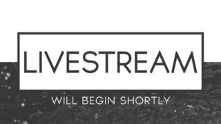 Clean BW : Livestream