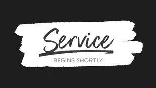 BrushBW : Service