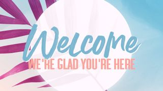 Pink Palm : Welcome
