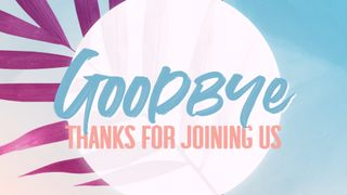Pink Palm : Goodbye