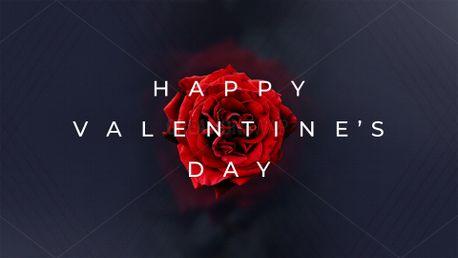 Valentine's Day 2021 (95763)