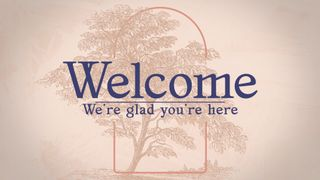 Vintage Tree : Welcome