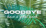 Palm Sunday Stills (95920)