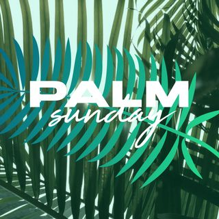 Palm Sunday Stills