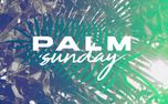 Palm Sunday Stills (95927)