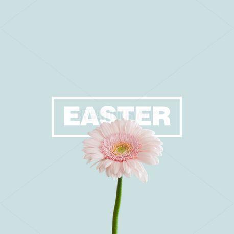 Easter  (95943)