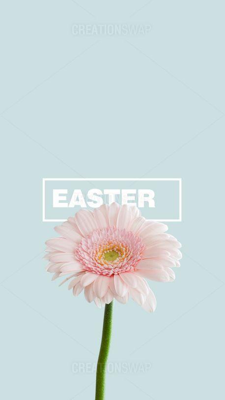 Easter (95944)