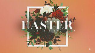 Floral Easter Motion Slide