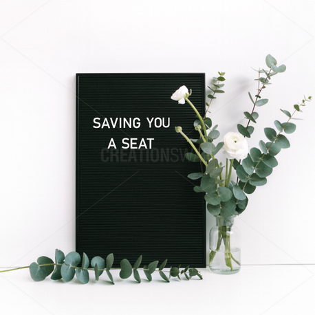 Saving you a Seat  (96127)