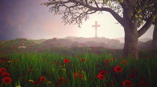 Cross landscape