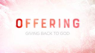 Rejoice : Offering