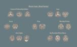 Church Hand Icons (96574)