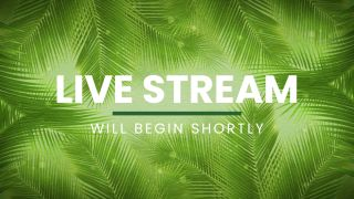 Live Stream Motion Title
