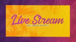 Live Stream Motion Slide