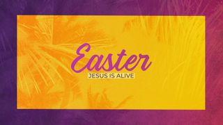 Easter Motion Slide