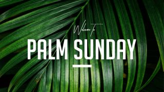 Welcome To Palm Sunday