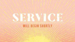 Sunshine_Service