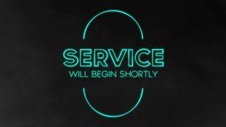 Teal Stroke : Service
