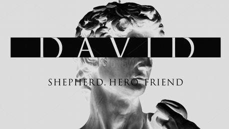 DAVID (97086)