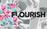 Flourish Sermon Series Art (97433)