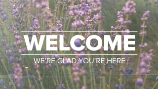 Lavender Welcome