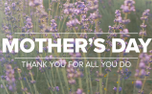 Lavender Mother's Day Greeting (97518)