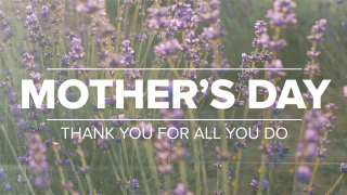 Lavender Mother's Day Greeting