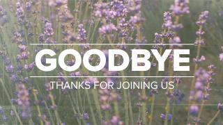 Lavender Goodbye