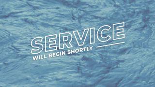 Blue River : Service