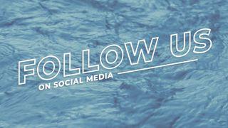 Blue River : Follow Us