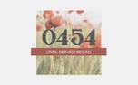 Poppy Countdown (97558)