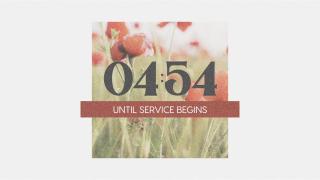 Poppy Countdown