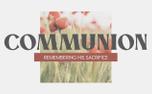 Poppy Communion (97559)
