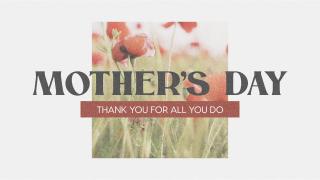 Poppy Mother's Day