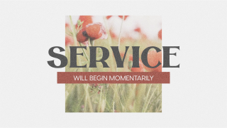 Poppy Service