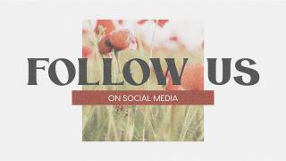 Poppy Social