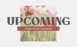 Poppy Upcoming (97565)